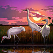 Whooping Cranes Tropical Florida Everglades Sunset Birds Landscape Scene Purple Pink Print Art Print