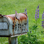 Whose Mailbox This Is I Think I Know Art Print