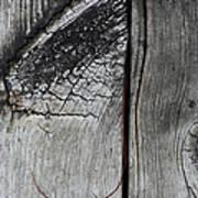 Why Knot 7 Art Print