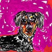 Wiener Dog Art Print