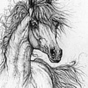 Wieza Wiatrow Polish Arabian Mare  Drawing 1  Art Print