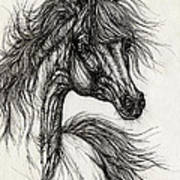 Wieza Wiatrow Polish Arabian Mare Drawing Art Print
