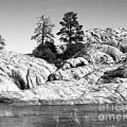Willow Lake Number One Bw Art Print by Heather Kirk