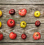 Wild Apples Art Print