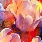 Wild Colors Art Print