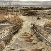 Wild Dunes Beach South Carolina Print by Dustin K Ryan