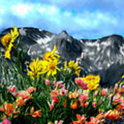Wild Flowers In The Moutains Art Print