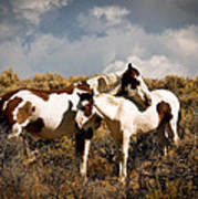 Wild Horses Mother And Child Art Print
