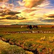 Wild Lands Of Nevada  Art Print