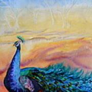 Wild Peacock Art Print
