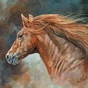 Wild Stallion Art Print