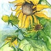 Wild Sunflowers Art Print by Sherry Harradence
