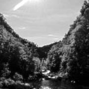 Wilderness Of Appalachia Art Print