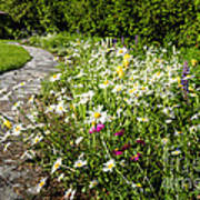 Wildflower Garden And Path To Gazebo Art Print