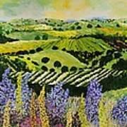 Wildflower Ridge Art Print