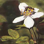 Wildflower Wildlife Art Print