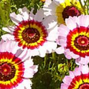 Wildflowerd Wide 1 Art Print