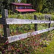 Wildflowers At The Fence Art Print