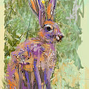 Wildlife Haas Art Print