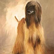 Willem Van Oranje Art Print