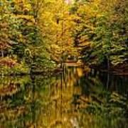 Willett Autumn Reflections Art Print