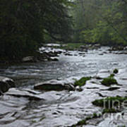Williams River Rain Downpour Art Print