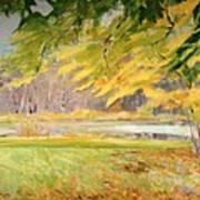 Williamstown Autumn Art Print