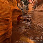 Willis Creek Slot Canyon Art Print