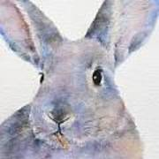 Willis Rabbit Art Print