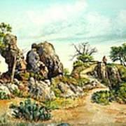 Willow Loop Overlook Art Print