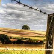 Wiltshire Art Print