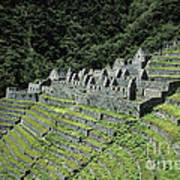 Winay Wayna Inca Trail Peru Art Print