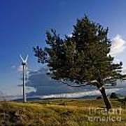 Wind Turbine And Tree On The Plateau Of  Cezallier. Auvergne. France. Art Print