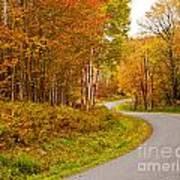 Winding Fall Road Art Print