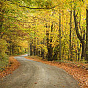 Winding Rural Road With Fall Colors Art Print