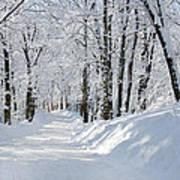 Winding Snowy Road In Winter Art Print
