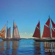 Windjammers  At A Maine Harbor Art Print