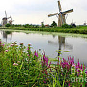 Windmills Of Kinderdijk With Wildflowers Art Print by Carol Groenen