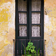 Window And Wall Colonial Style Art Print