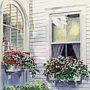 Window Boxes Art Print by David Lloyd Glover