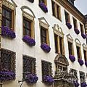 Window Boxes In Germany Art Print