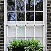 Window In London Art Print by Elena Elisseeva