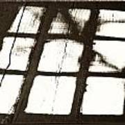 Window Shadow Art Print