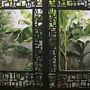 Window With Bamboo And Banana Plant Art Print