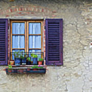 Window With Potted Plants Of Rural Tuscany Art Print