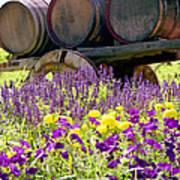 Wine Barrels At V. Sattui Napa Valley Art Print by Michelle Wiarda