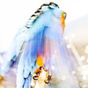 Wing Dream Print by Fran Riley