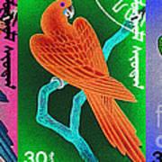Wings Of Paradise Art Print