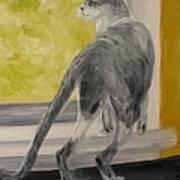 Winkie Wildcat Art Print