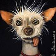 Winner Of The Ugly Dog Contest 2011 Art Print